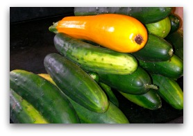 cucumbers and squash; simple vegetarian recipes